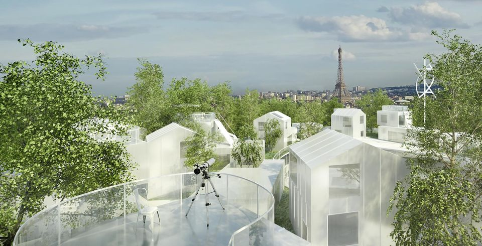 mille-arbres_foret-sur-le-toit