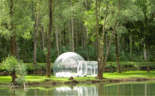 bubble-tree-6