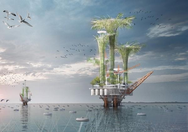 concour-evolo-noah-oasis