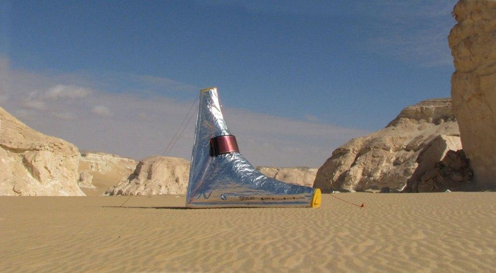 desert-seal-3