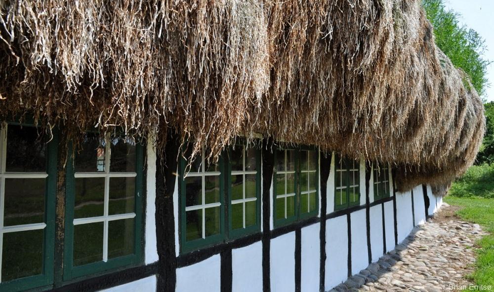 maisons-toit-algues-8.jpg